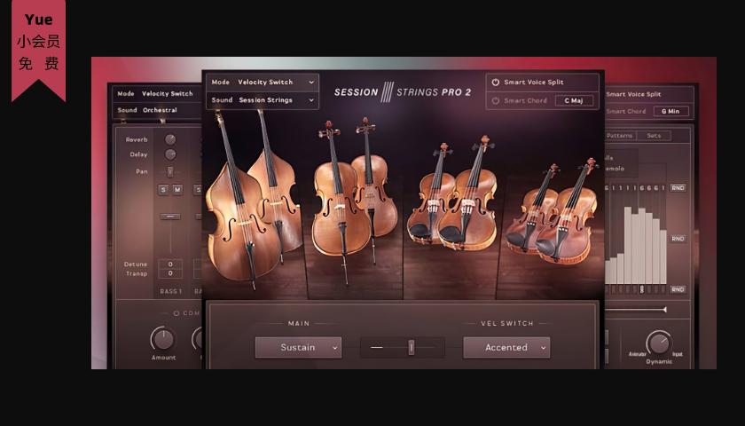 流行弦乐组-Session Strings 2